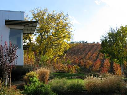 Paso Robles Rising — New Wineries, Quality All Around