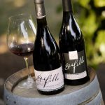 Willamette Valley and Seven AVAs — Exploring Oregon Pinot Noir